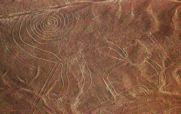 The image of a monkey, one of many figures among the giant Nazca Lines of Peru