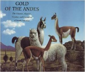 book-gold