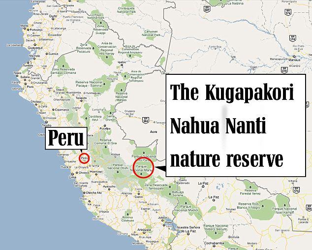 The Kugapakori Nahua Nanti Reserve on the border of Manu National Park, Peru